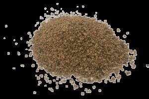 coquille-de-noix-prétraitée-2